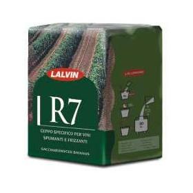 Lalvin R7®