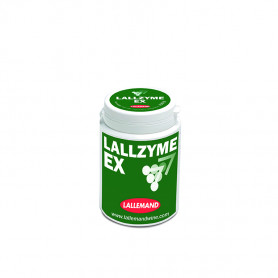 LALLZYME EX (10x100gr)